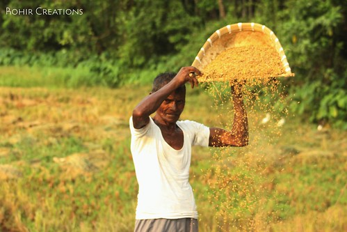 Winnowing | by Rohir Creations