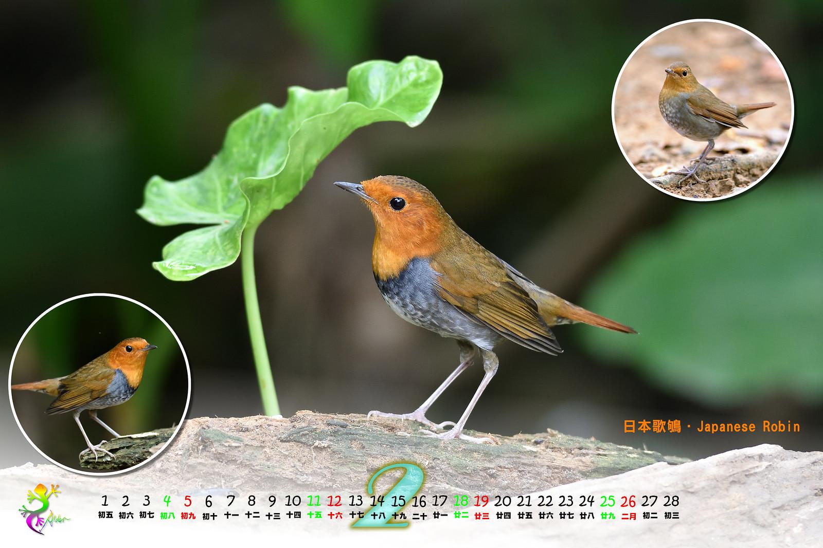 Calendar2017_2_03