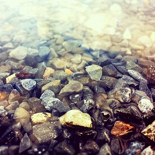 Clear water | by flaviochan