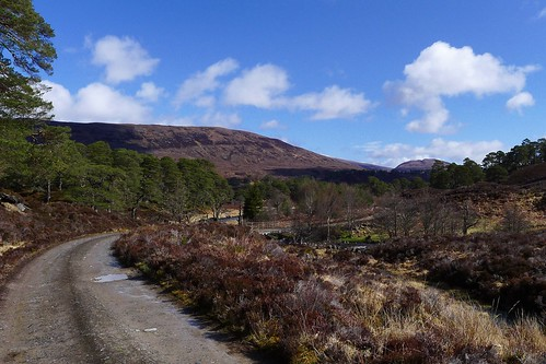 Glen Affric Track | by Nick Bramhall