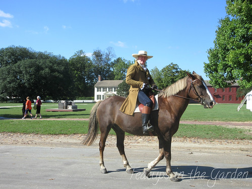 Thomas Jefferson on Horse 2