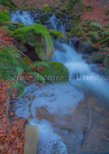 Parque Natural de Gorbeia   #DePaseoConLarri #Flickr      -2758