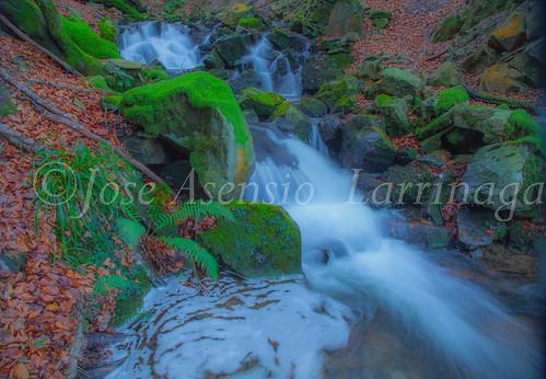 Parque Natural de Gorbeia   #DePaseoConLarri #Flickr      -2757