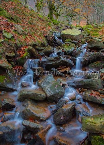 Parque natural de Gorbeia #DePaseoConLarri #Flickr      -2077