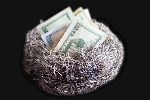 Nest Egg of Cash | by aag_photos