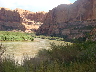 43 Hwy 128 langs Colorado river