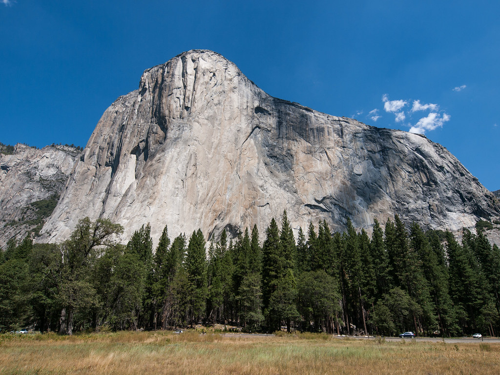 Image result for the nose el capitan