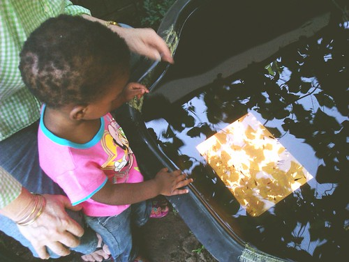 97/366: Thanda Watching The Fish | by Chris Bloom