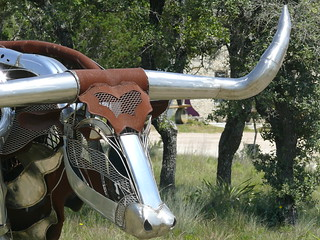 Metal longhorn | by ccarlstead