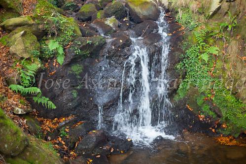 Parque Natural de #Gorbeia #DePaseoConLarri #Flickr      -1479