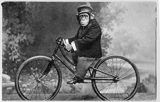 monkey_on_bicycle_vintage_1216757373 | by julialat34