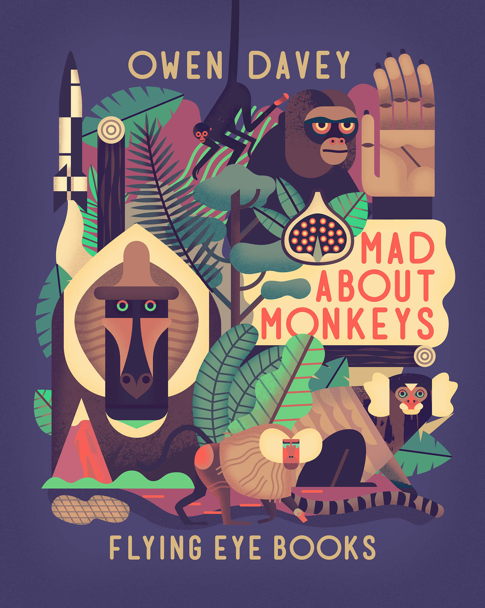 Mad about monkeys - book