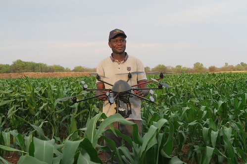 Drone used to monitor maize crop health | by CGIAR Climate