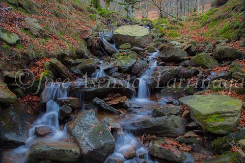 Parque natural de Gorbeia #DePaseoConLarri #Flickr      -2075