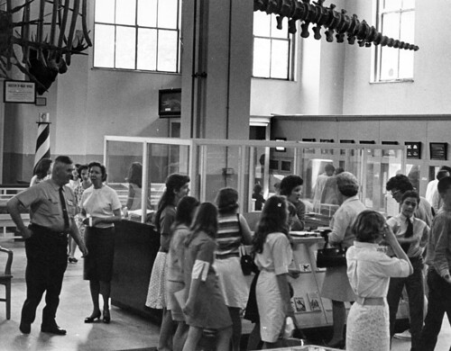 PhC42_Bx19_Museum of Natural History_F64-6 | by State Archives of North Carolina