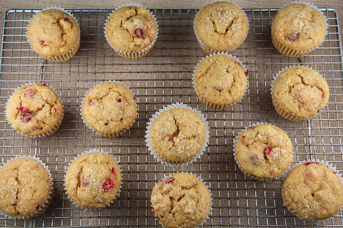 Pumpkin Cranberry Muffins | by Food Librarian
