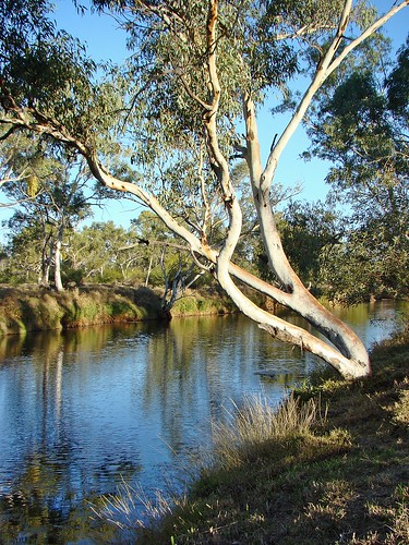 Rest and Relax....          ' Beauty spot near Mt Isa, Queensland ' | by ☆.¸.•*´¨´¨*•☆Pin 1946☆.¸.•*´¨