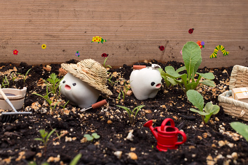 Gardening Toof | by Inhae Lee