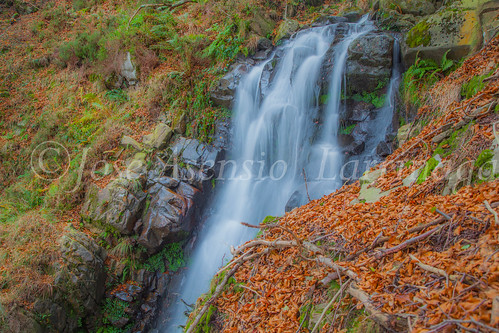 Parque natural de Gorbeia #DePaseoConLarri #Flickr      -2039