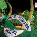 FLOR DA PRIMAVERA - 2011