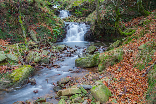 Parque natural de Gorbeia #DePaseoConLarri #Flickr      -2001