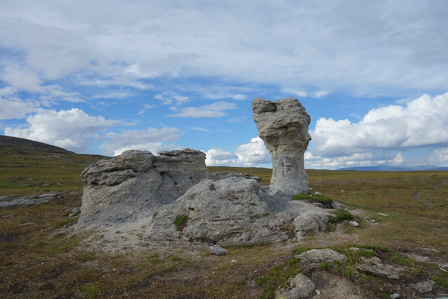 A very common photo object along the Padjelanta trail. Truly stands out in this type of terrain.