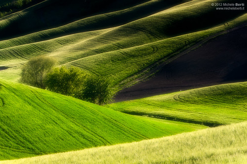 Greenery (Maggio 2012) | by Michele Berti