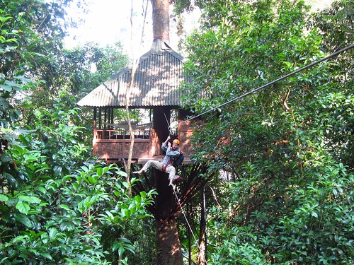Zipline from our Treehouse | by fabulousfabs
