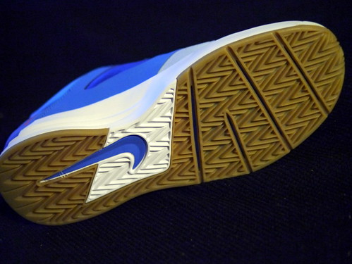 Lunarlon Sb Nike Shoes