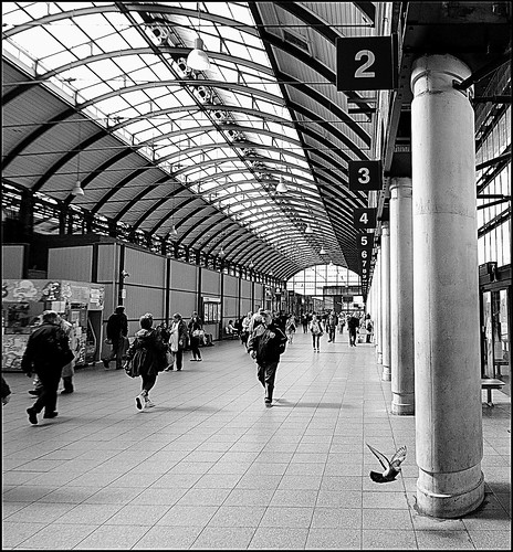 Hull Station street B&W (pigeon capture) | by Adam Good