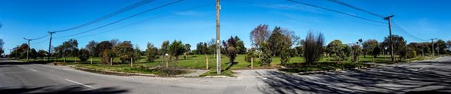 Avonside Drive