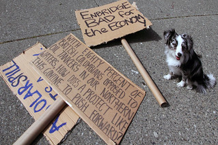 "【ツ】Puppy says ""No Enbridge Pipeline"" 