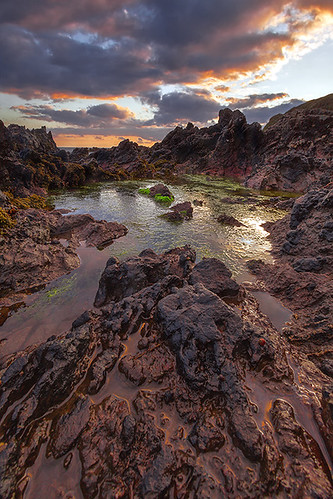 Heybrook Pool | by Andy Fox Photography