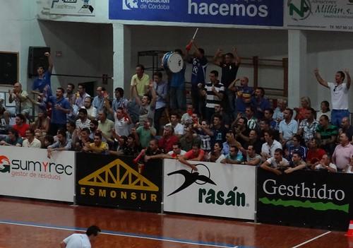 spanish handball league