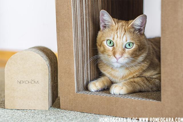 Nekohomu: casas rascadores para gatos