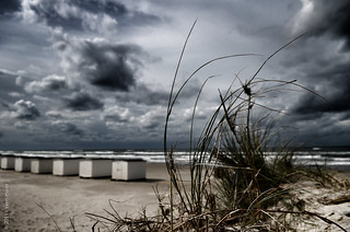 Denmark #7 - Stormy weather | by sven21465
