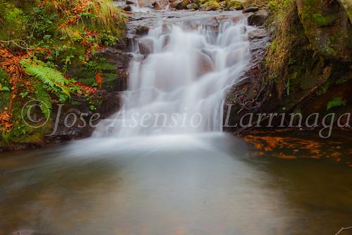Parque natural de Gorbeia #DePaseoConLarri #Flickr      -2012