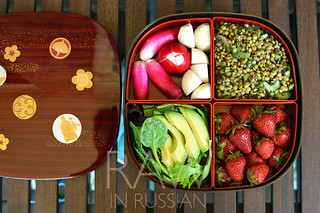 Shokado bento - raw food. French lentil salad with dulse flakes. | by Marina Kh