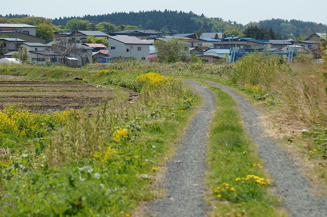 A farm road