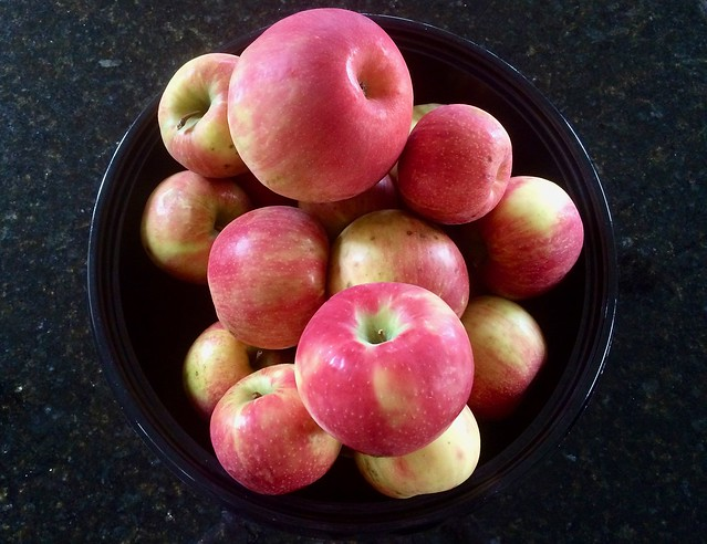 8 Pounds of Honeycrisp Apples