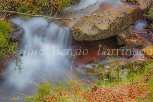Parque natural de Gorbeia #DePaseoConLarri #Flickr      -2048