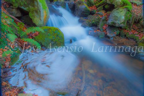 Parque Natural de Gorbeia   #DePaseoConLarri #Flickr      -2762