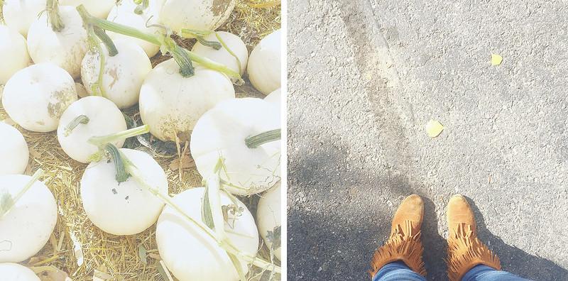 instagram_october_1