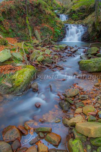Parque natural de Gorbeia #DePaseoConLarri #Flickr      -2016