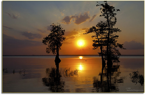 Blue Cypress Lake Sunset 6 | by JMW Natures Images