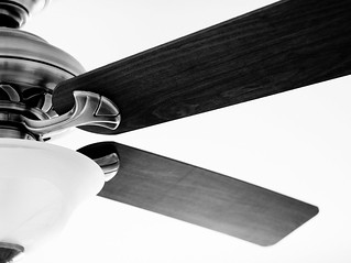 ceiling fan | by Steve A Johnson