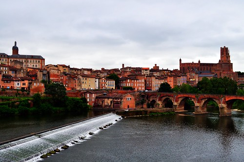 Albi | by Funky Tee