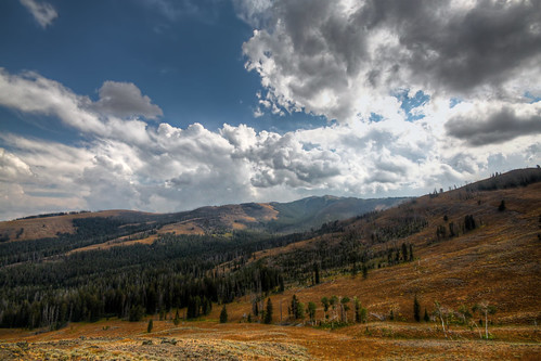 Tower Area, Yellowstone National Park, WY | by mac9001