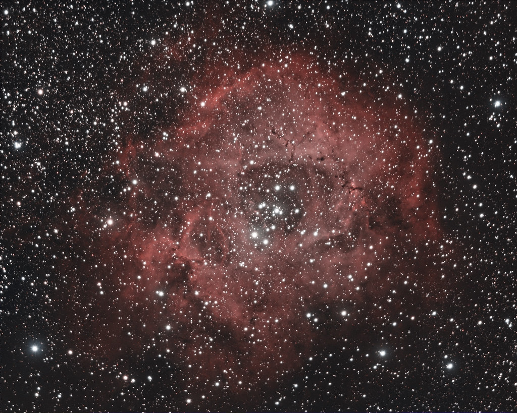 Nébuleuse de la rosette (NGC 2237)