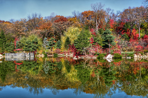 Fall Colors at Anderson Japanese Gardens, Rockford, IL | by mac9001